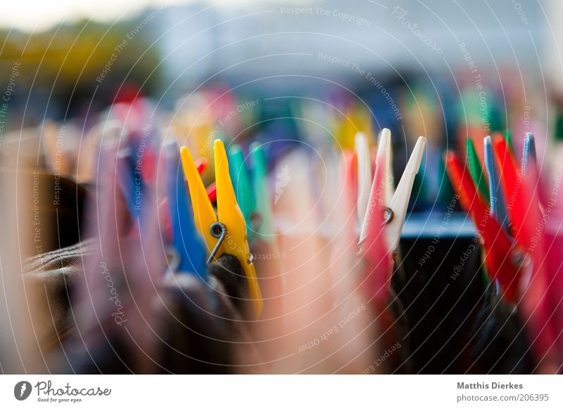 clothespins Fresh Clothes peg Laundry Clean Laundered Clothing Colour photo Exterior shot Blur Shallow depth of field Multicoloured Holder To hold on