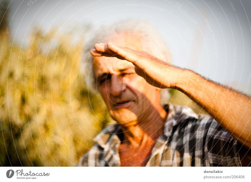 pretty bright Human being Masculine Male senior Man Senior citizen Hand 1 45 - 60 years Adults Old Hot Warmth Yellow Protection Colour photo Multicoloured