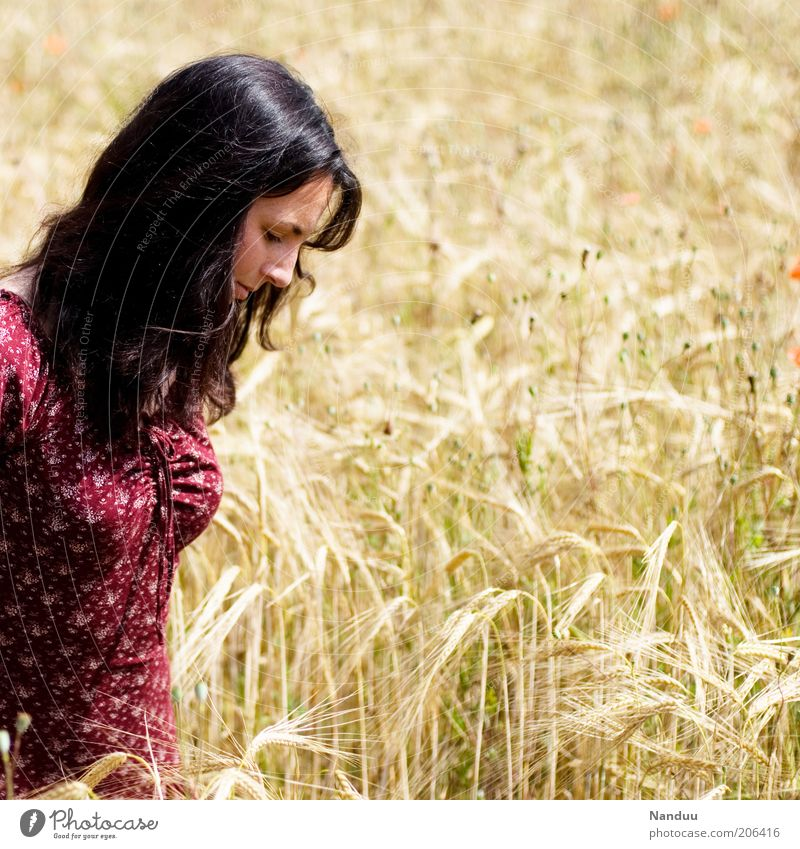 Woman Human being Beautiful Summer Relaxation Feminine Field Adults To go for a walk Leisure and hobbies Joie de vivre (Vitality) Natural To enjoy Cornfield