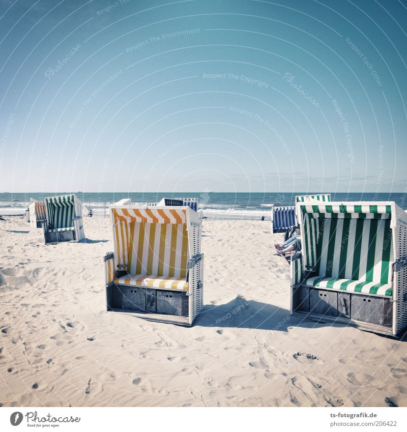 Give me a basket Vacation & Travel Tourism Summer Summer vacation Sun Sunbathing Beach Ocean Island Waves Nature Cloudless sky Beautiful weather North Sea