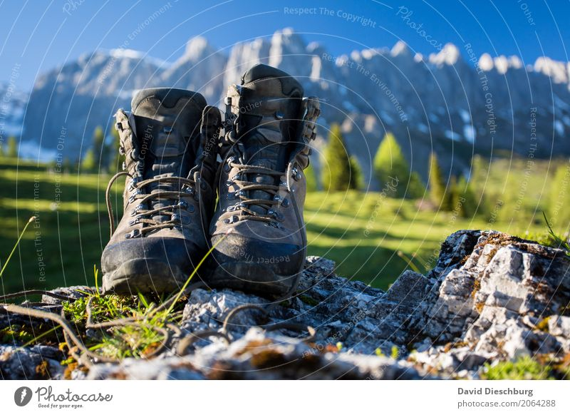 Nature Vacation & Travel Plant Summer Landscape Relaxation Mountain Spring Autumn Sports Freedom Tourism Rock Trip Dream Hiking