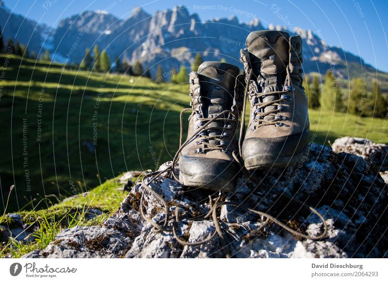 hiking time Vacation & Travel Tourism Adventure Far-off places Summer vacation Mountain Hiking Climbing Mountaineering Landscape Cloudless sky Spring