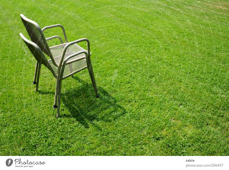 A pair of chairs Chair Metal Stand Gray Green Arrangement Stagnating Garden chair In pairs Lawn Green space Grass Consecutively Stack Space-saving