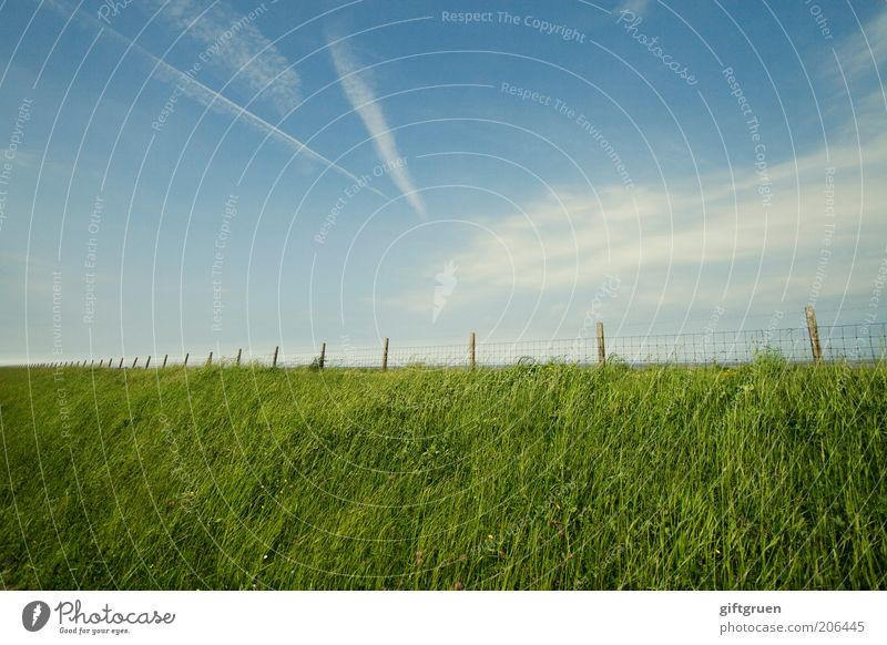 Nature Sky Green Blue Clouds Grass Landscape Coast Environment Stripe Infinity Border Fence Beautiful weather Barrier North Sea
