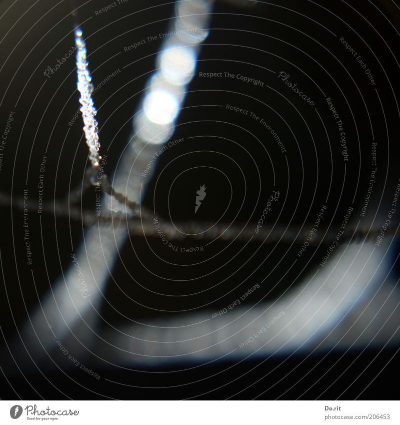 black ribbon Environment Nature Water Drop Illuminate Dark Black Synthesis Black & white photo Exterior shot Detail Copy Space bottom Day Night Flash photo