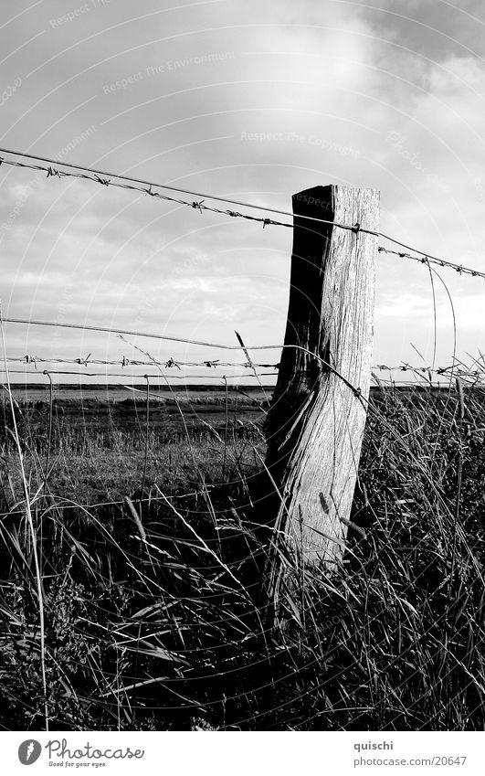 Wood Landscape Field Fence Pole