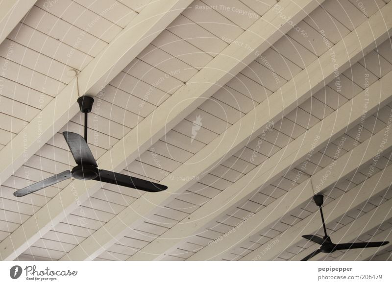 wind turbines Calm Wood Fan Colour photo Interior shot Deserted Roof beams Refrigeration