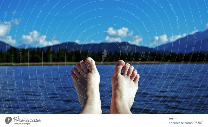 relaxation Human being Feet Toes Toenail 1 Swimming & Bathing Mountain Water Lake Lakeside Clouds Clouds in the sky Tree Summer Relaxation Blue