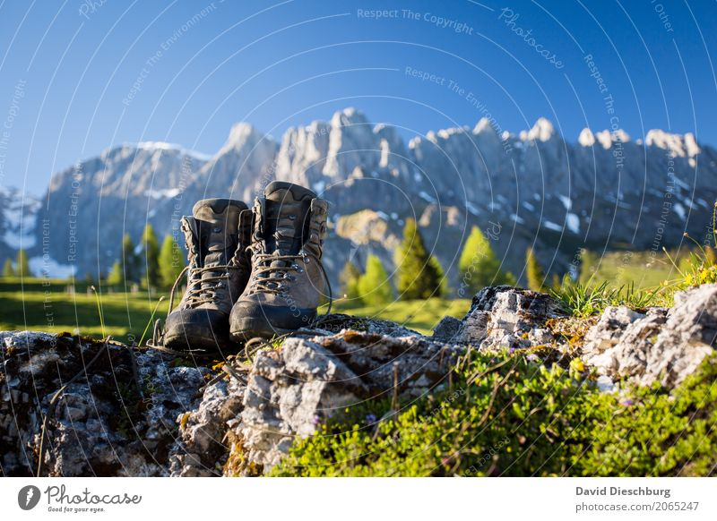 mountain age Vacation & Travel Tourism Trip Adventure Far-off places Freedom Expedition Summer vacation Mountain Hiking Landscape Cloudless sky Sunrise Sunset