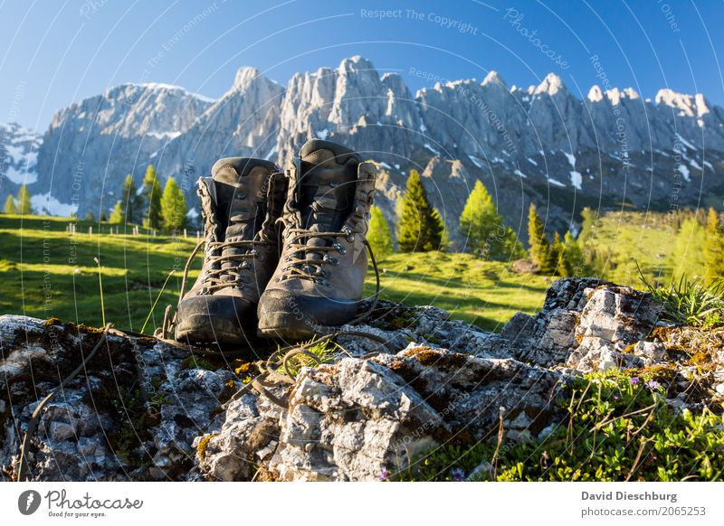 Nature Vacation & Travel Plant Summer Tree Landscape Relaxation Mountain Spring Grass Tourism Germany Rock Trip Hiking Beautiful weather