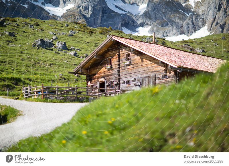 refreshment Vacation & Travel Tourism Trip Adventure Expedition Summer vacation Mountain Hiking Nature Spring Beautiful weather Grass Rock Alps Peak Glacier Hut