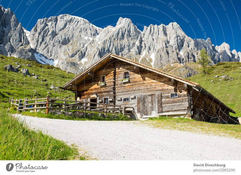 mountain hut Calm Vacation & Travel Tourism Adventure Freedom Summer Summer vacation Mountain Hiking Landscape Cloudless sky Spring Beautiful weather Plant