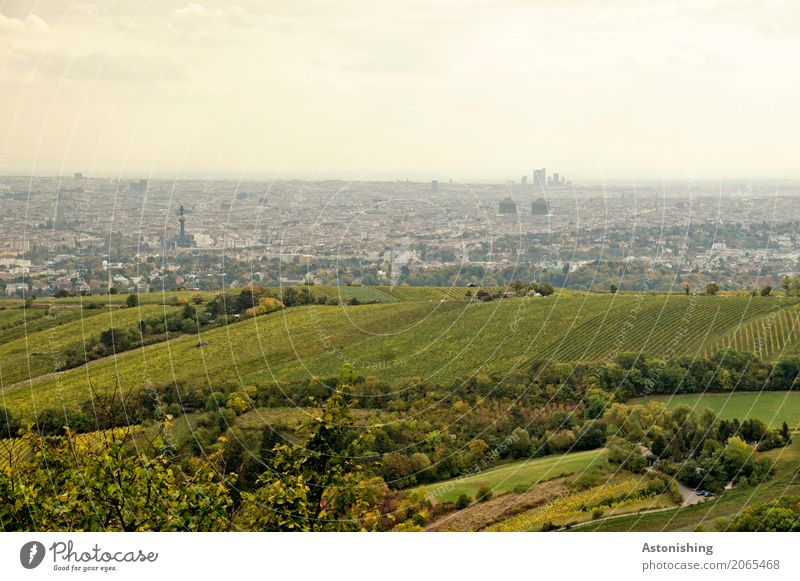 green city? Environment Nature Landscape Plant Sky Clouds Horizon Weather Tree Grass Bushes Hill Vienna Austria Town Capital city Outskirts
