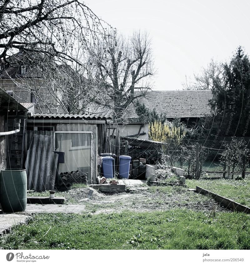 Sky Tree Plant Winter House (Residential Structure) Grass Garden Building Gloomy Lawn Hut Manmade structures Trash container Untidy Gardenhouse Garden plot