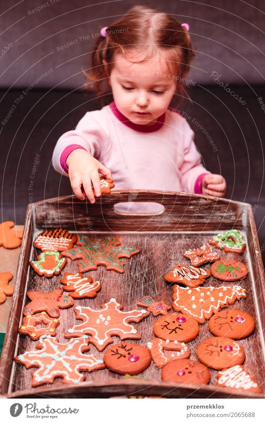 Little girl placing Christmas gingerbreads on wooden tray Decoration Table Feasts & Celebrations Child Human being Toddler Girl 1 1 - 3 years String Make