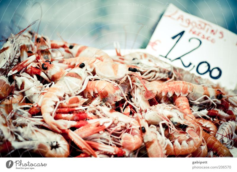Nutrition Food Fresh Appetite Heap Claw Selection Delicacy Seafood Fish market Protein Shrimps Lobster Crustacean Crawfish Dead animal