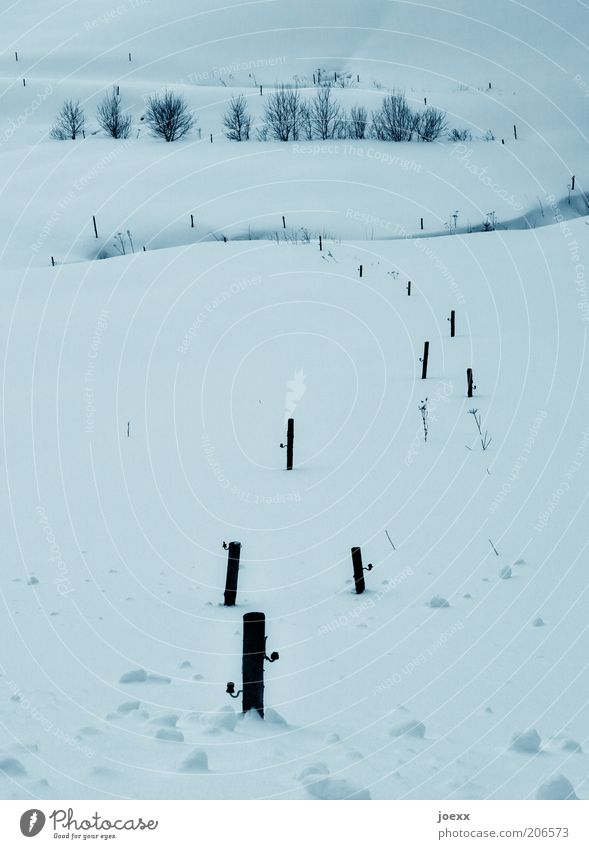Nature White Winter Calm Loneliness Cold Snow Landscape Field Frost Natural Idyll Snowscape Pole Deep snow Snow layer