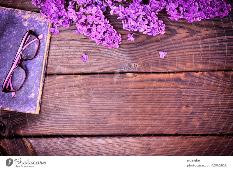 purple lilac and an old book with glasses Book Flower Blossom Paper Wood Old Above Retro Brown Violet cover Lilac background vintage Purple knowledge board