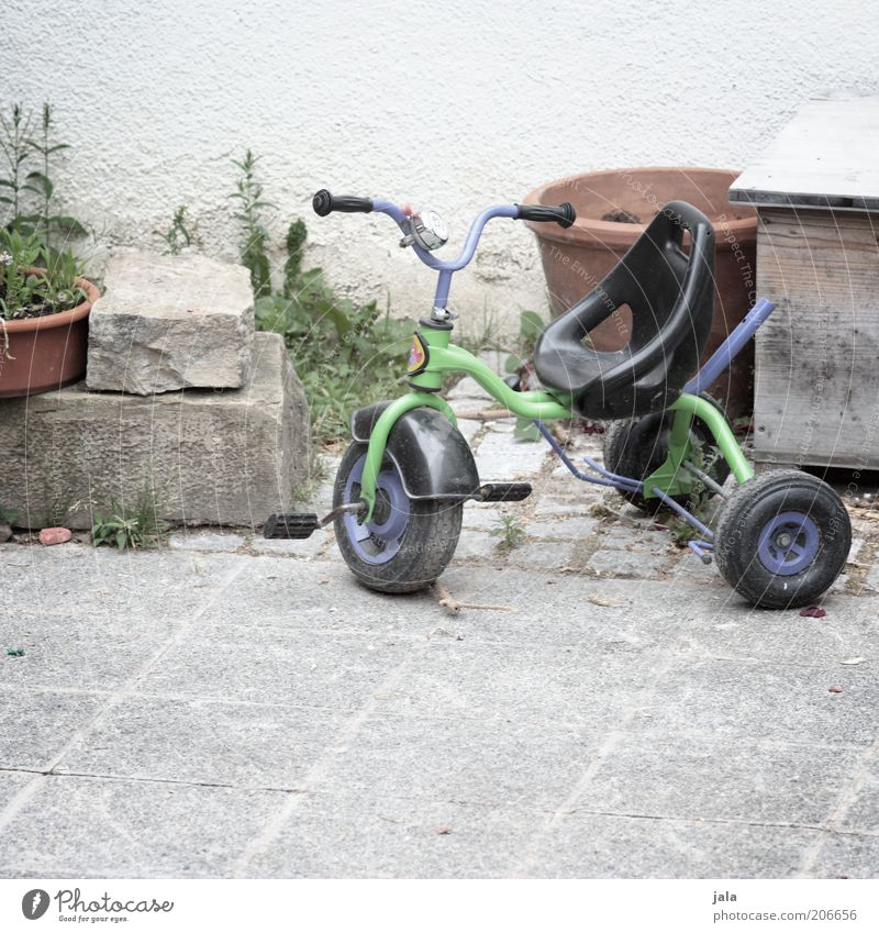 tricycle Pot plant Facade Tricycle Stone Green Violet Colour photo Exterior shot Deserted Copy Space bottom Day Stone floor Toys Backyard Parking