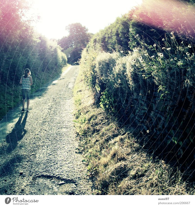 Child Nature Youth (Young adults) Girl Sun Green Plant Summer Grass Spring Lanes & trails Going Bushes Footpath Beautiful weather Human being