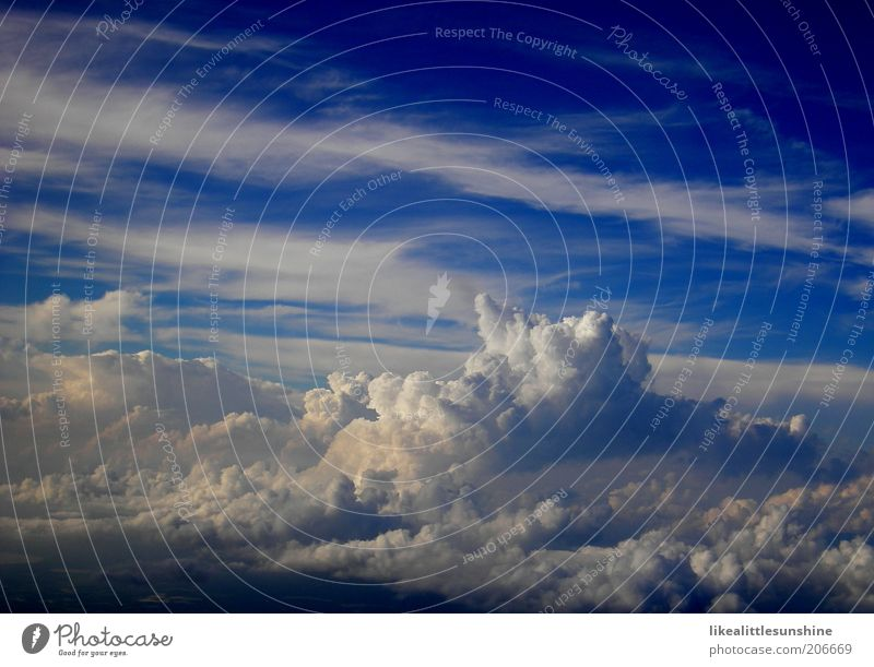 clouds Air Sky only Clouds Beautiful weather Blue Ease Colour photo Exterior shot Aerial photograph Deserted Day Bird's-eye view Blue sky White