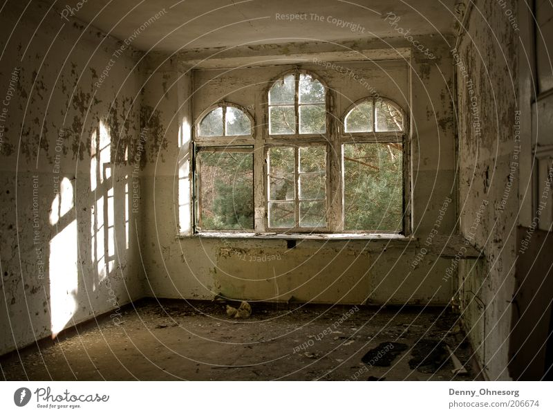 Beelitz sunbeams Sunlight Beautiful weather Deserted Ruin Building Architecture Wall (barrier) Wall (building) Window Stone Wood Old Dirty Creepy Bright Gloomy
