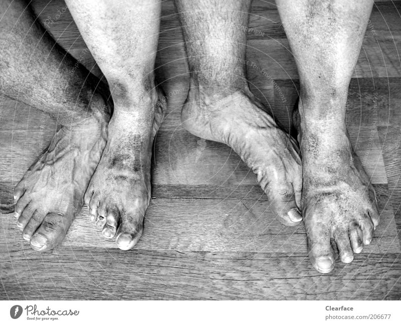 quadruped Human being Couple Feet Wood Authentic Disgust Cleanliness Whimsical Team Barefoot Black & white photo Interior shot Dirty Wooden floor Men`s feet 4