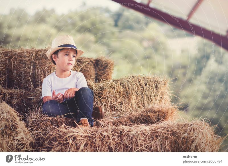 pensive child in the field Human being Child Vacation & Travel Summer Loneliness Lifestyle Sadness Spring Love Emotions Boy (child) Freedom Think Masculine Trip