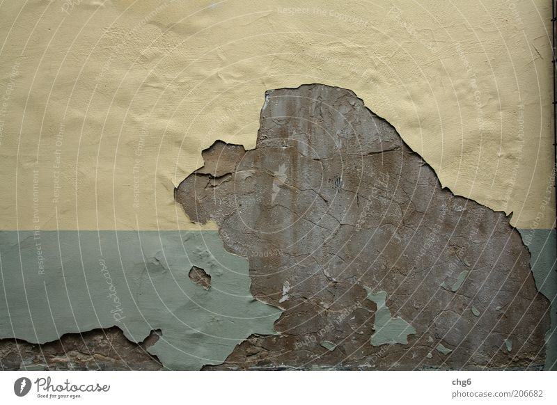 Old Green Yellow Colour Stone Dye Brown Concrete Facade Derelict Decline Plaster Destruction Flake off