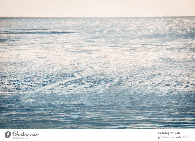 Nature Water Sky Ocean Summer Beach Far-off places Sand Landscape Waves Coast Environment Horizon Earth Elements North Sea