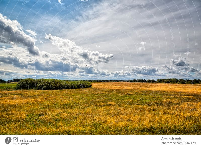 Sky Nature Vacation & Travel Summer Landscape Clouds Far-off places Environment Life Lifestyle Spring Meadow Style Germany Moody Horizon