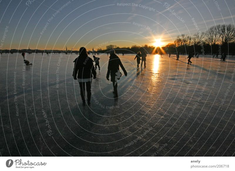 Human being Nature Winter Relaxation Life Lake Air Moody Ice Going Trip Hamburg Frost To go for a walk Uniqueness Frozen