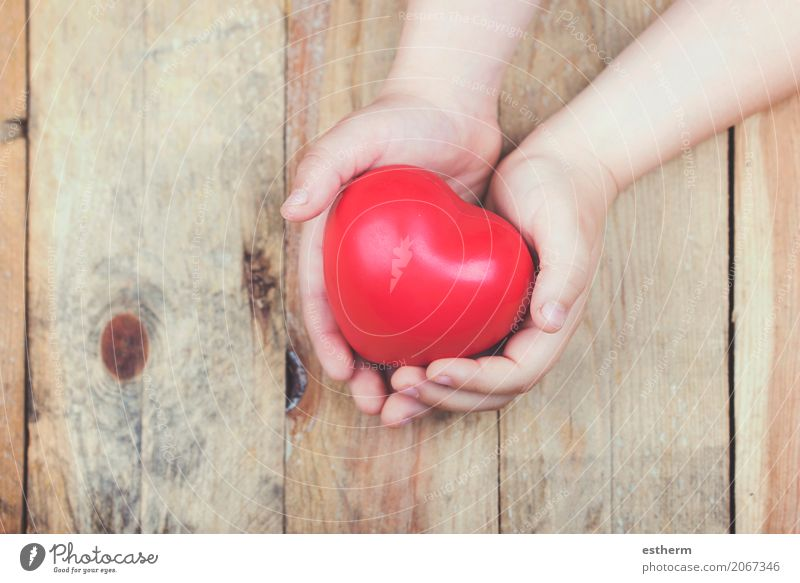 Heart in a child's hands Human being Child Hand Girl Lifestyle Love Healthy Feminine Health care Together Friendship Masculine Breasts Infancy Fingers