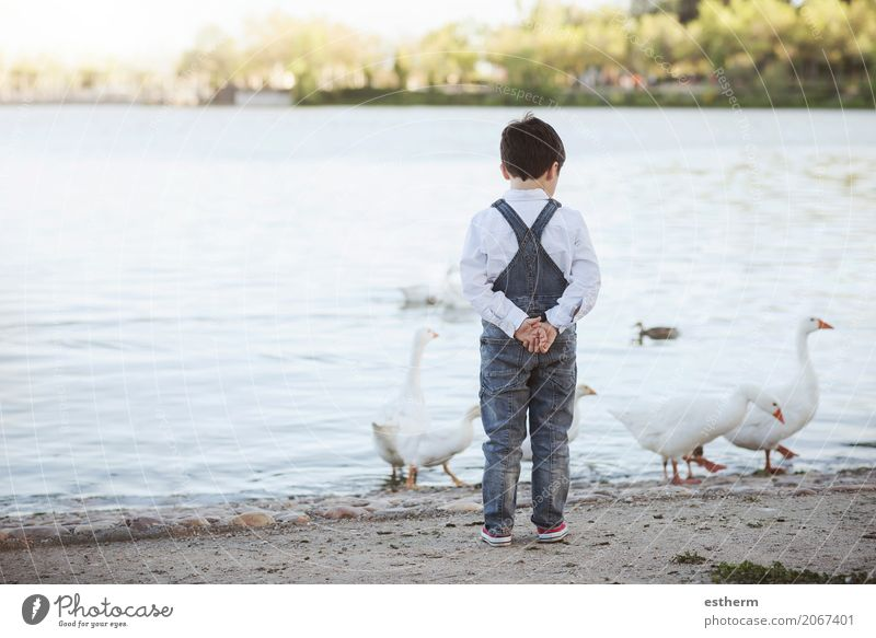 Thoughtful child on the lake. Back view Human being Child Vacation & Travel Summer Loneliness Lifestyle Sadness Spring Emotions Boy (child) Freedom Lake