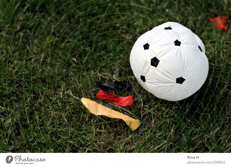 Red Black Sports Emotions Soccer Moody Germany Gold Ball Balloon Lawn Flag Leisure and hobbies Lose Frustration Fiasco