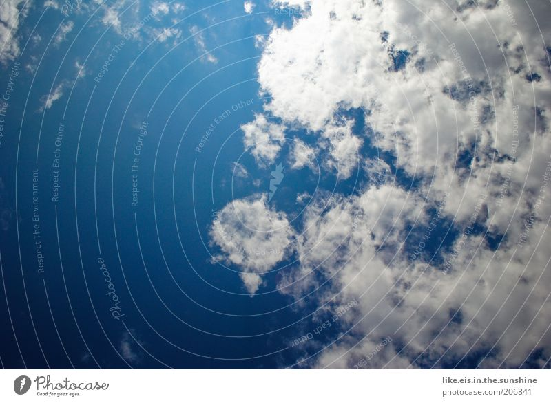 Sky Nature Blue White Summer Sun Clouds Warmth Weather Climate Beautiful weather Ease Climate change Blue sky Sky blue Blue-white