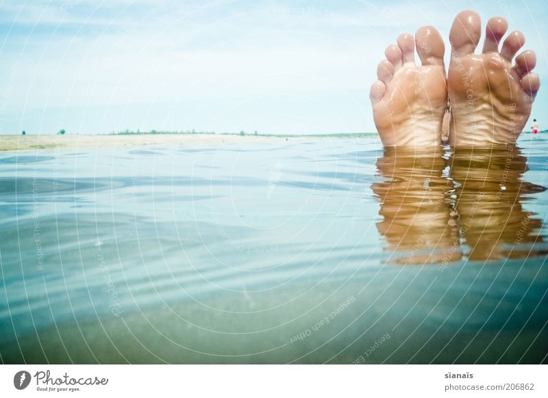 Human being Vacation & Travel Water Summer Relaxation Calm Beach Funny Happy Freedom Swimming & Bathing Lake Feet To enjoy Swimming pool Refreshment