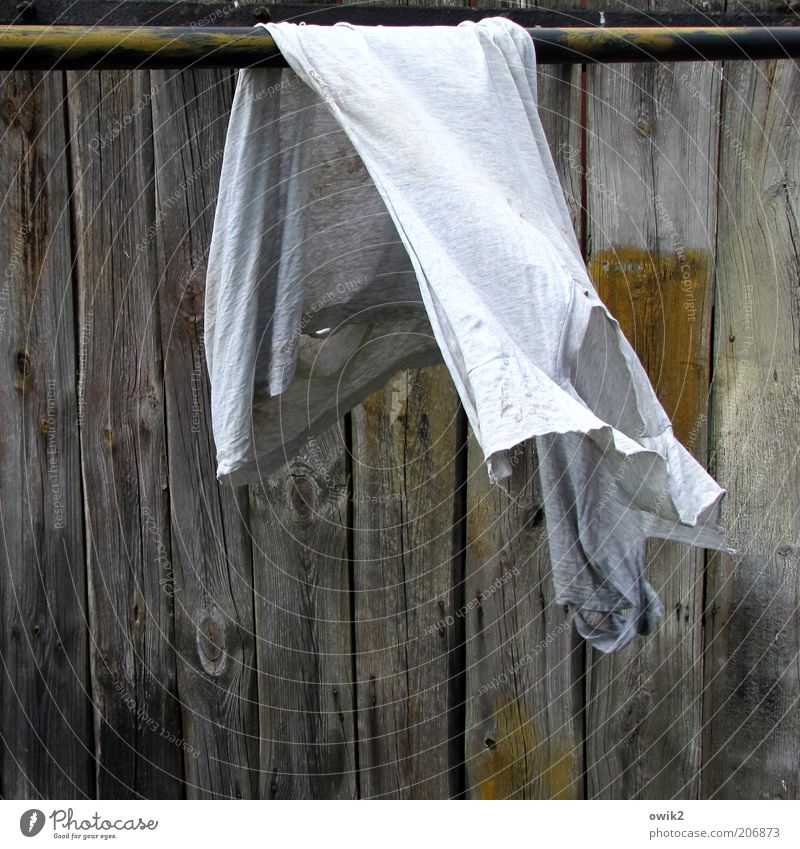 hung Movement Hang Old Clean Dry Cleanliness Purity Laundry Clothing Textiles Shirt Broken tattered Undershirt Wooden wall Rod Wind Breeze Colour photo
