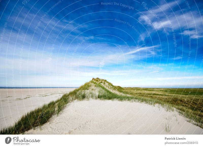 worlds apart Environment Nature Landscape Plant Elements Earth Sand Air Sky Clouds Summer Coast Beach North Sea Ocean Island Beautiful Wanderlust Spiekeroog