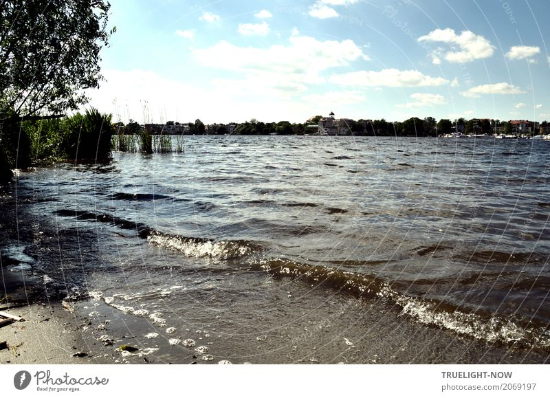 Thanks to Photocase today this: Potsdam shore skyline. Leisure and hobbies Vacation & Travel Tourism Trip Sightseeing City trip Summer Summer vacation Beach