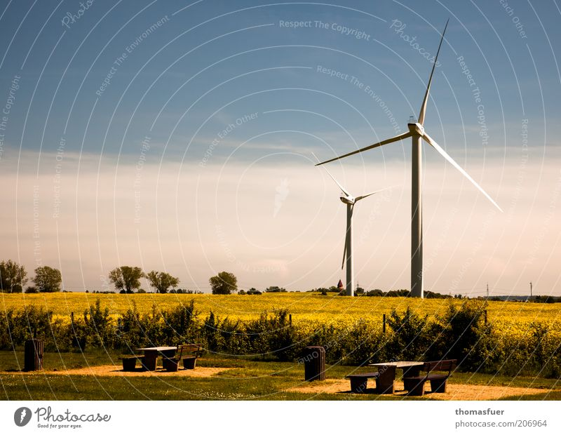 Sky Summer Field Environment Energy Energy industry Future Bench Climate Wind energy plant Beautiful weather Environmental protection Blue sky Canola Sustainability Advancement
