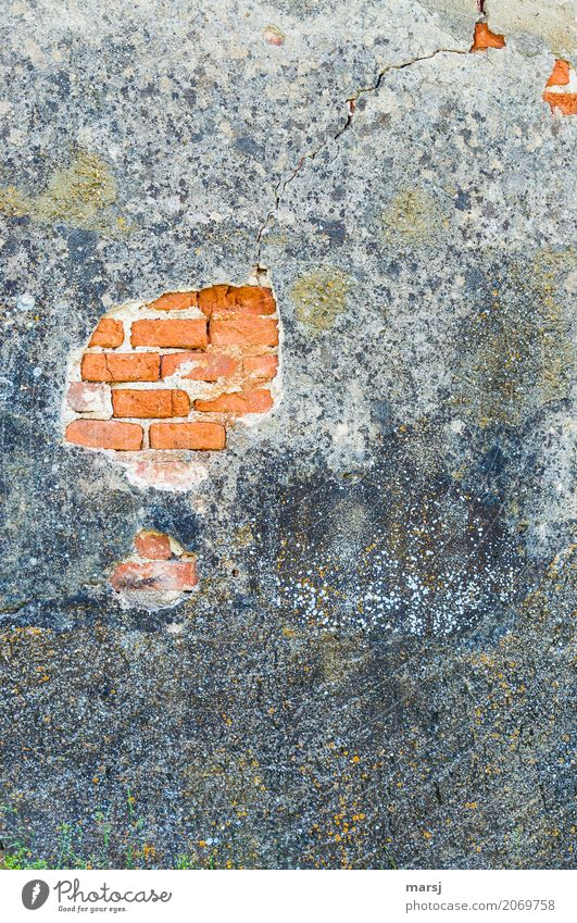 broken l the plaster crumbles Manmade structures Wall (barrier) Wall (building) Facade Brick Plaster Brick red stonewalled Old Sadness Senior citizen End