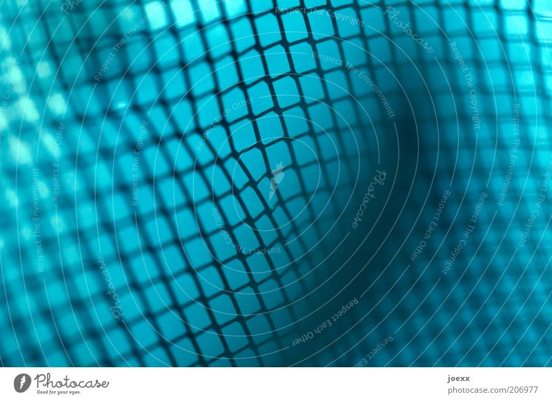 scam Metal Mesh grid Grating Protective grid Net Wire netting Colour photo Detail Macro (Extreme close-up) Reticular Network Interlaced Abstract