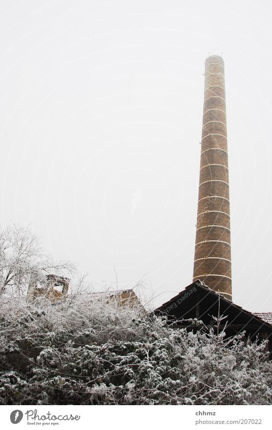 Cold fireplace Tree Bushes Industrial plant Factory Chimney Stone Old Brown Frost Decline Sky Gray Winter Hoar frost Snow Colour photo Subdued colour