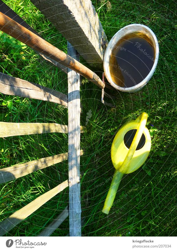 Water Green Plant Summer Yellow Work and employment Grass Wood Fence Beautiful weather Gardening Bucket Watering can Pitchfork Garden fence