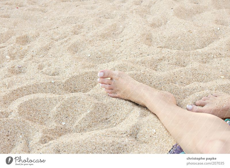 Pure Summer Feeling Well-being Contentment Relaxation Vacation & Travel Tourism Summer vacation Sunbathing Beach Young woman Youth (Young adults) Feet Sand Lie