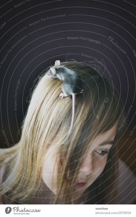 headgear Child Girl 13 - 18 years Youth (Young adults) Head Hair and hairstyles Face Mouse Tails Climbing Discover Ear Pet Rodent Fear Disgust Timidity Cute