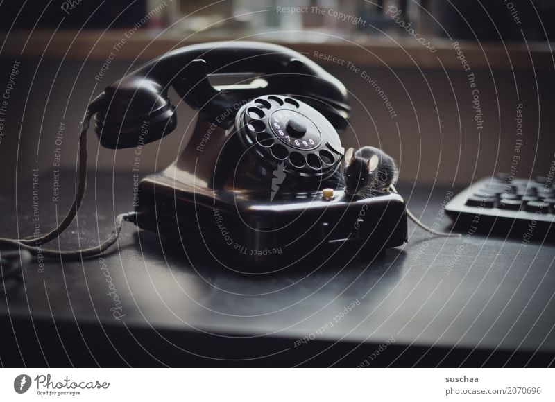 phone (with mouse) Mouse Animal Pet Mammal Tails Telecommunications Old phone Telephone Rotary dial Bakelite Phone Curiosity Connection Office Animalistic Funny