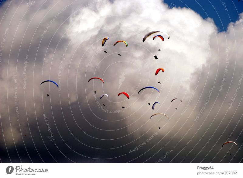 Like the lemmings. Leisure and hobbies Vacation & Travel Summer Sports Group Sky Clouds Storm clouds Weather Beautiful weather Warmth Aviation Aircraft Flying