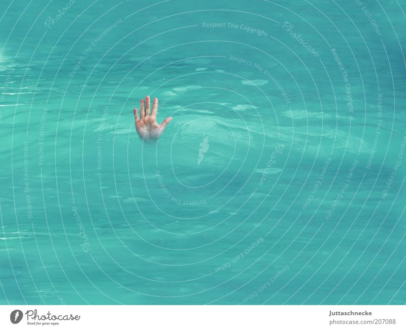 Stop, no passage! Dive Swimming pool Hand Fingers Blue Watchfulness Fear of death End Survive Drown Go under Stick out Palm of the hand Wet Deep Colour photo